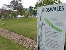Bioswales