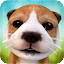 Dog Simulator APK for Nokia