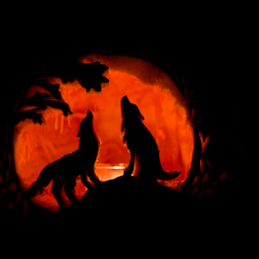 Howling Halloween by Jerry Alt - Public Holidays Halloween ( carved, wolf, pumpkin, wolves, halloween )