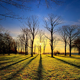 Through the Eyes of a Child by Phil Koch - Landscapes Prairies, Meadows & Fields ( vertical, photograph, farmland, yellow, storm, leaves, love, sky, nature, tree, autumn, shadow, snow, flower, wind, orange, twilight, agriculture, horizon, portrait, dawn, winter, environment, season, national geographic, serene, trees, floral, inspirational, wisconsin, natural light, phil koch, spring, sun, photography, farm, ice, horizons, rain, inspired, clouds, office, park, green, scenic, morning, shadows, wild flowers, field, red, blue, sunset, fall, peace, meadow, summer, sunrise, earth, landscapes )