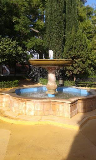 Fuente Tenencia de Alcaldia
