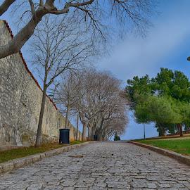 by Kristijan Pernar - City,  Street & Park  City Parks (  )