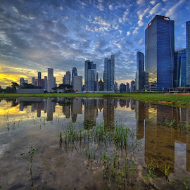 by Vince Chong - City,  Street & Park  Skylines