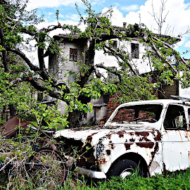 Nature always wins by Robert Dumitru - Transportation Automobiles ( car, old, vintage, rusty )