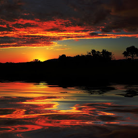 Sunset 1 by Angelica Glen - Landscapes Sunsets & Sunrises ( clouds, water, sunset, trees, lake,  )