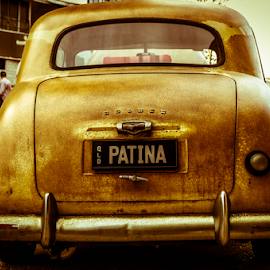 Patina by Petra Bensted - Transportation Automobiles ( car, gold coast, vintage, holden, cooly rocks )