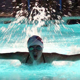 Night Fly by Harry  Phillips - Sports & Fitness Swimming