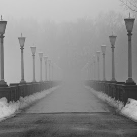 Heavy Fog by Sue Matsunaga - Novices Only Street & Candid