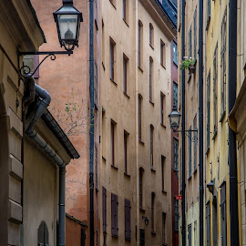 Around Every Corner by Matt Shell - City,  Street & Park  Neighborhoods ( sweden, stockholm, buildings, light, alley )