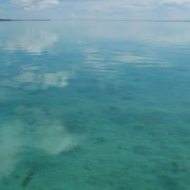 underwater by Indri Rasad - Landscapes Underwater (  )