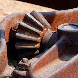 Rust Art by Joel Rivera - Artistic Objects Other Objects