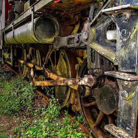 Forgotten and rotting by Ned Kelly - Transportation Trains ( railroad, locomotive, train, steam )
