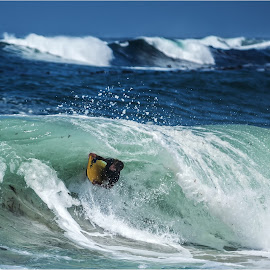 in the tube by Maricha Knight van Heerden - Sports & Fitness Surfing ( barreling, onrus, waves, body boarding, summer, crashing )