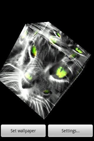 3D 고양이 009