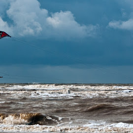 Wind Surfer by Peter Jarvis - Sports & Fitness Surfing ( wind, surfer, waves, kite, tide, sea )