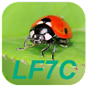"LF7C ""Loto Foot"" Calculator icon"