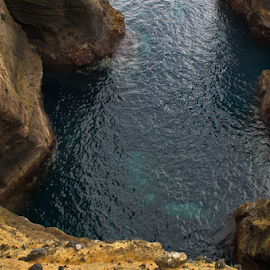 by Alfredo Peixoto - Nature Up Close Water