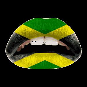 jamaican patois dictionary apk download