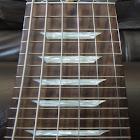 Electric Guitar Fretboard icon