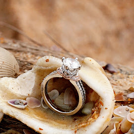 Beach Engagement by Lauri Andrews - Wedding Bride