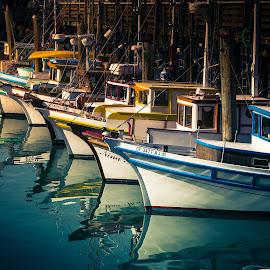 San Francisco Fishing Boats by David Long - Transportation Boats ( fishing boats, california, san francisco )
