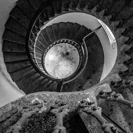 Spiral by Vibeke Friis - Buildings & Architecture Architectural Detail ( stairs, auckland art gallery,  )