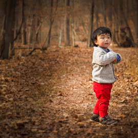 In the woods by Bob Hynson - Babies & Children Toddlers ( child, children, forest, leaves, toddler, woods,  )