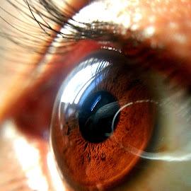 eye,, by Iwan Irmansah - Novices Only Macro ( #eye )