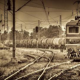 Old train on the way by Georgi Petkov - Transportation Trains ( bdz, railroad tracks, hdr, train, bulgaria )
