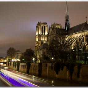 Notre-Dame de Paris by Stephan Guenot - Buildings & Architecture Places of Worship (  )