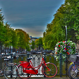 Amsterdam city by Guido Flock - City,  Street & Park  Historic Districts ( grachten, red bicycle, amsterdam, bridge, city )