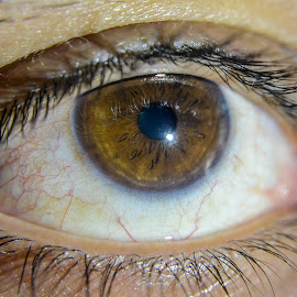 The eye... by Sujit Shanshanwal - People Body Parts