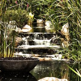 Waterfall Garden by Paul Jacob Bashour - Nature Up Close Water ( waterfall, garden )