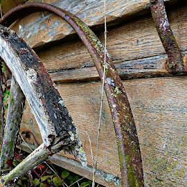 Wagon wheel by Costa Philippou - Transportation Other ( wood, wagon wheel, wagon, cart )