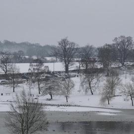 frozen lake by Anne-Marie Lambert - Landscapes Weather (  )
