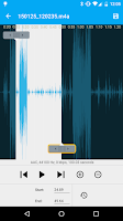 Screenshot of Audio Recorder and Editor