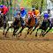 Horse Races-283-Edit.jpg
