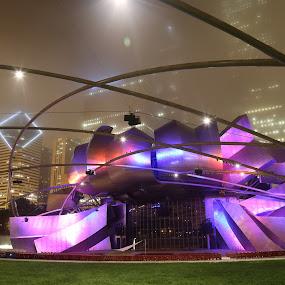 Pritzker Pavilion by VAM Photography - Buildings & Architecture Public & Historical ( cities, pavilion, travel, architecture, chicago )