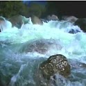 Wild River Flow icon