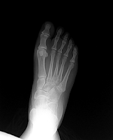 Screenshot of X-Ray Scanner