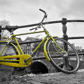 Yellow bike by Angelo Pereira - Transportation Bicycles ( selective color, pwc )