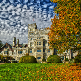 Hatley castle by Doug Clement - City,  Street & Park  Historic Districts ( clouds, autumn, fall, castle, fall  autumn, colours, color, colorful, nature )