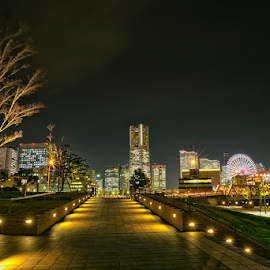 Nightscapes by Nyoman Sundra - City,  Street & Park  City Parks ( japan, night, sakuragicho, yokohama, city )