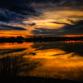 Gotcha Moment by Linda Karlin - Landscapes Sunsets & Sunrises ( nature, sunset, landscape )