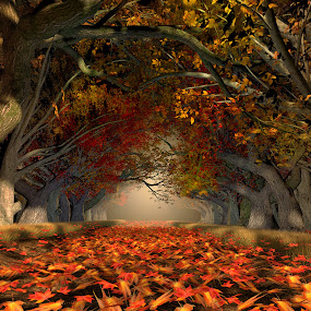 Autumn Path (3D illustrated) by Jamie Keith - Illustration Places