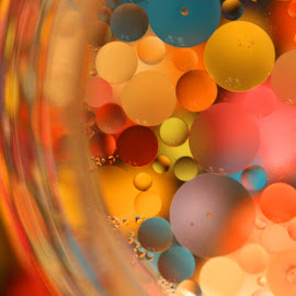 Floating Oil Drops by Janet Herman - Abstract Macro ( abstract, macro, colors, ellipses, floating, reflections, float, oil )