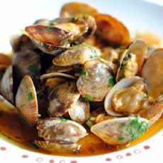 Clams in Tomato
