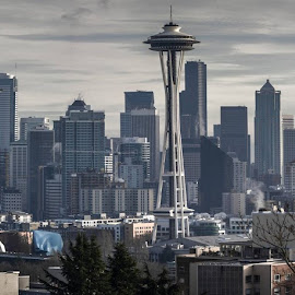 Seattle  by Chris Stevens - City,  Street & Park  Skylines ( washington state, space needle, mt rainier, seattle, kerry park )