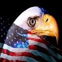 3D Eagle1 icon