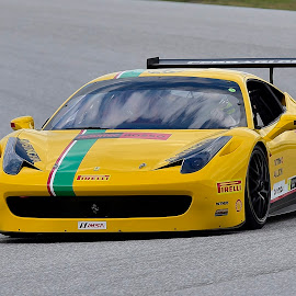 by Terry Barker - Sports & Fitness Motorsports